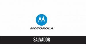 autorizada motorola salvador